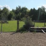 Plein 3 Hasseltse Hondenschool vzw